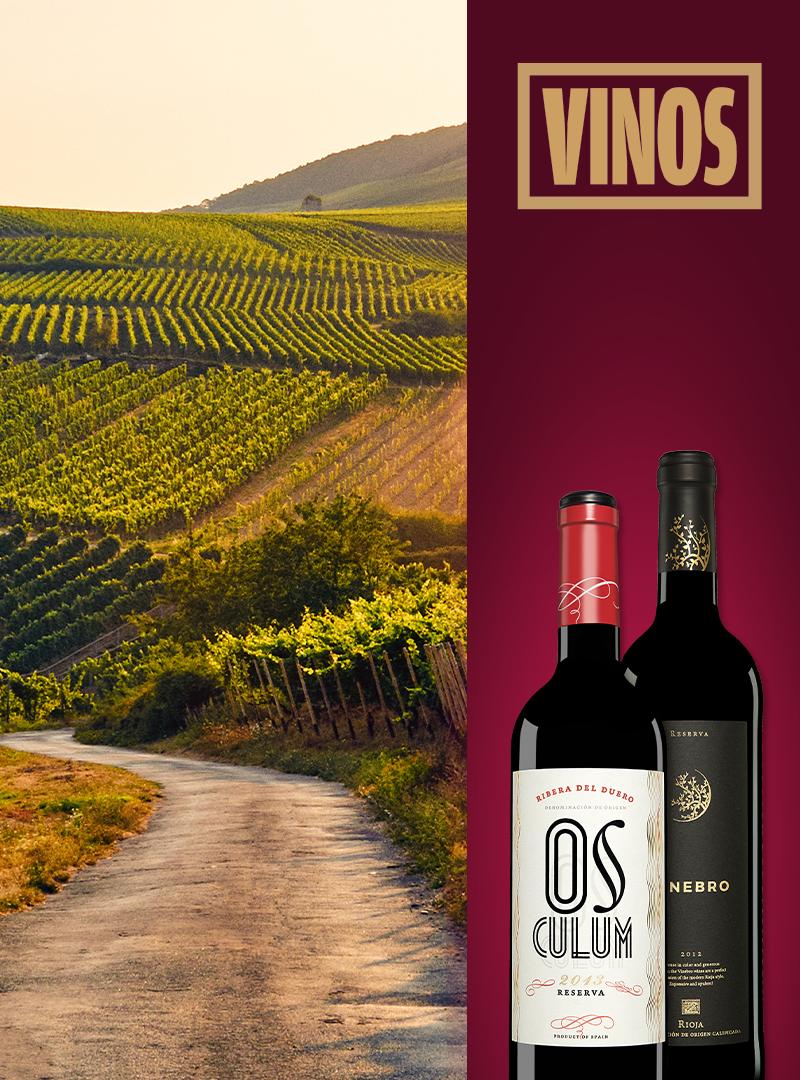 Weinberge in Spanien, Vinos Logo, zwei Weinflaschen